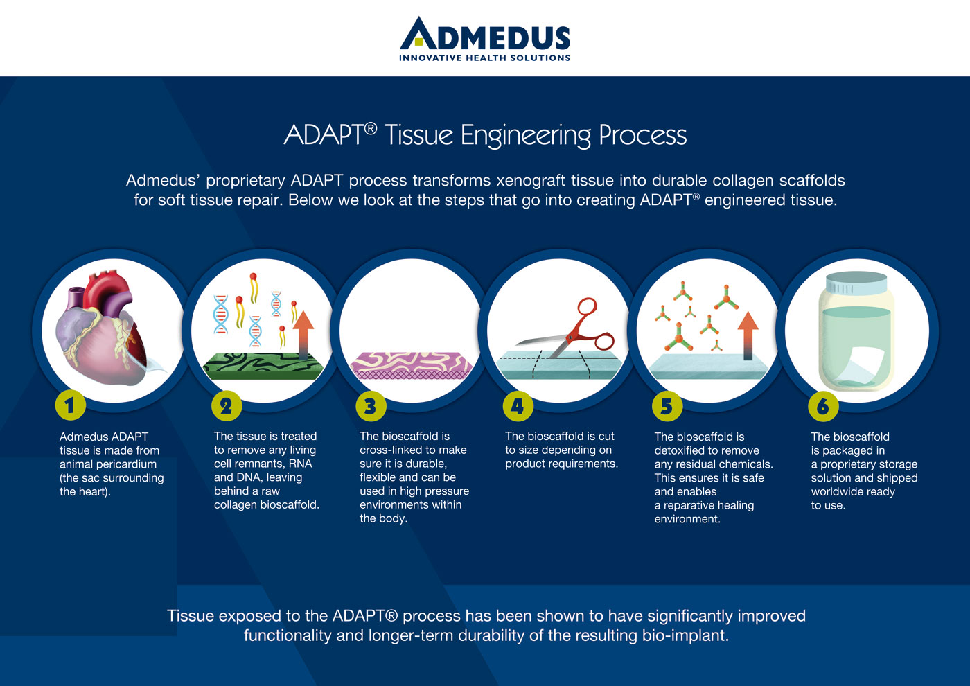 ADAPT Tissue Eng Process